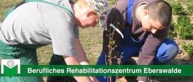 "Berufliches Rehabilitationszentrum Eberswalde ""Lebensträume"""